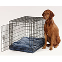 Bowsers Dog Beds | 20% Off  | Bowsers Dog Beds
